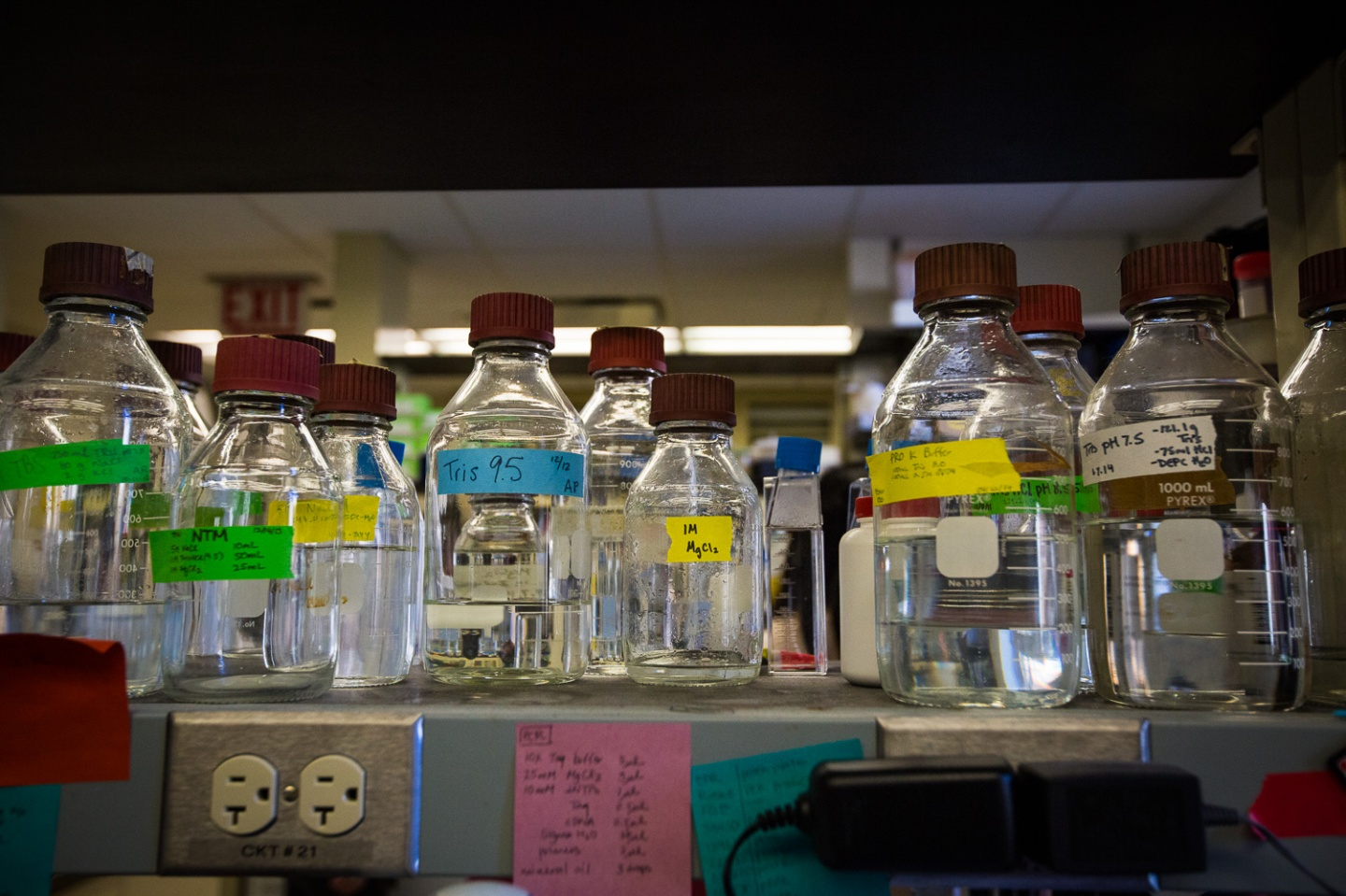 bottles of clear chemicals lined up next to each other